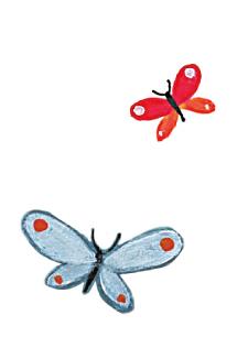 farfalle_arcobaleno_onlus